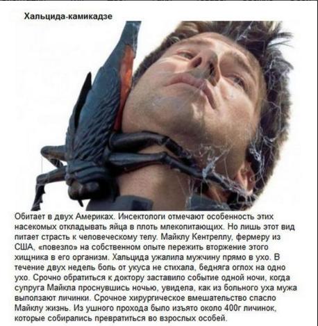http://s8.uploads.ru/fK2BW.png