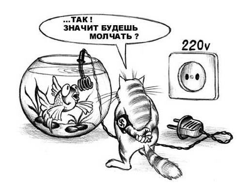 http://s8.uploads.ru/faG8K.jpg