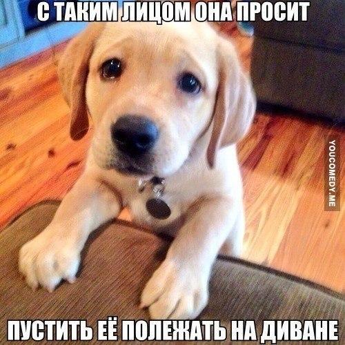 http://s8.uploads.ru/fd6zt.jpg