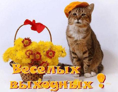 http://s8.uploads.ru/iho7k.jpg
