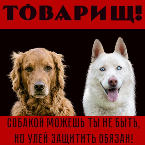 http://s8.uploads.ru/iz0h7.png