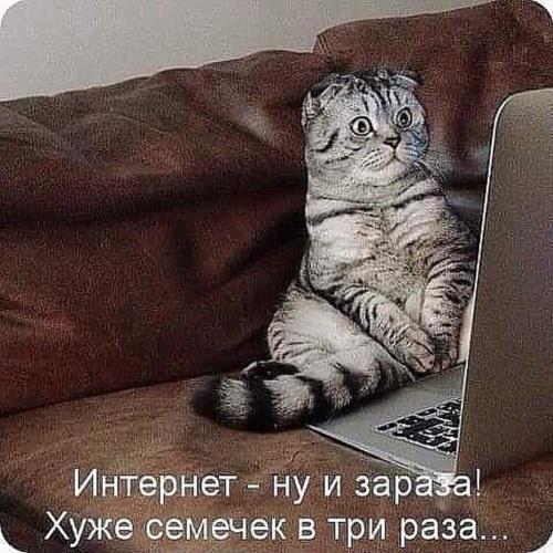 http://s8.uploads.ru/nl3TK.jpg