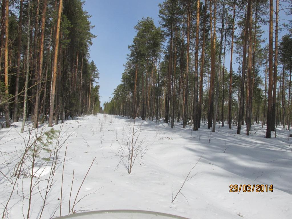 http://s8.uploads.ru/nlF8j.jpg