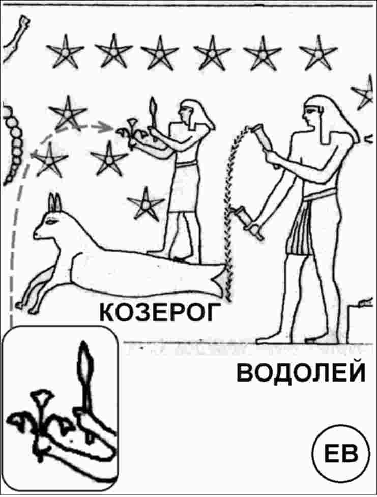 http://s8.uploads.ru/nqMet.jpg