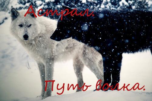 http://s8.uploads.ru/s4Z5o.jpg
