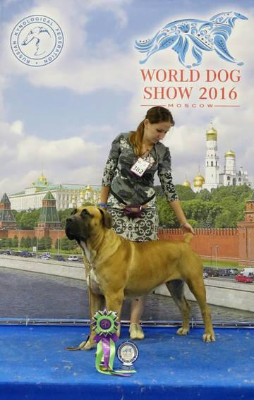 http://s8.uploads.ru/t/0PVaN.jpg