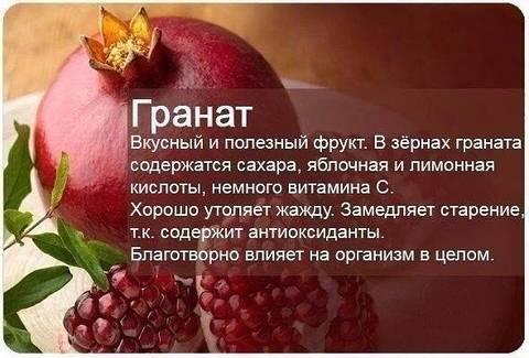 http://s8.uploads.ru/t/0n9EL.jpg