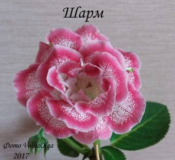 http://s8.uploads.ru/t/1GfMP.jpg