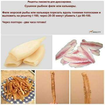 http://s8.uploads.ru/t/25fsr.jpg