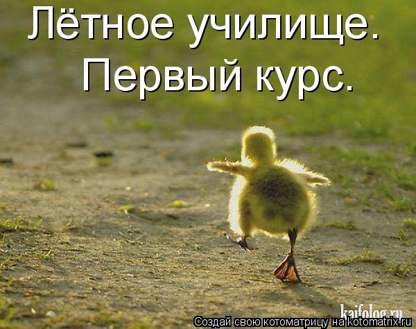 http://s8.uploads.ru/t/2Blzm.jpg
