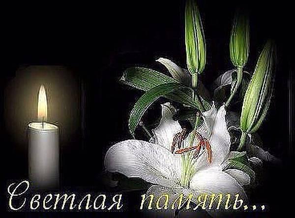 http://s8.uploads.ru/t/31YvP.jpg