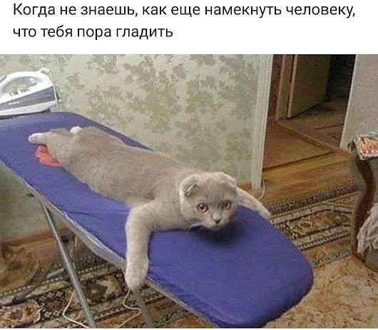 http://s8.uploads.ru/t/3AhIg.jpg