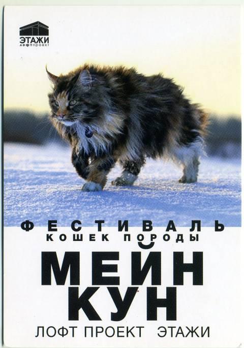 http://s8.uploads.ru/t/3HFLl.jpg