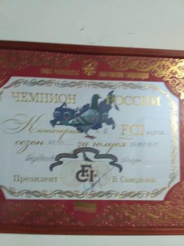 http://s8.uploads.ru/t/3zXnU.jpg