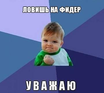 http://s8.uploads.ru/t/4XeRM.jpg