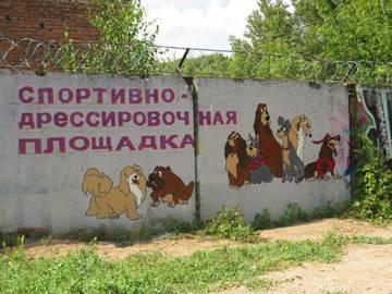 http://s8.uploads.ru/t/6bgAP.jpg