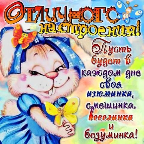 http://s8.uploads.ru/t/79buI.jpg