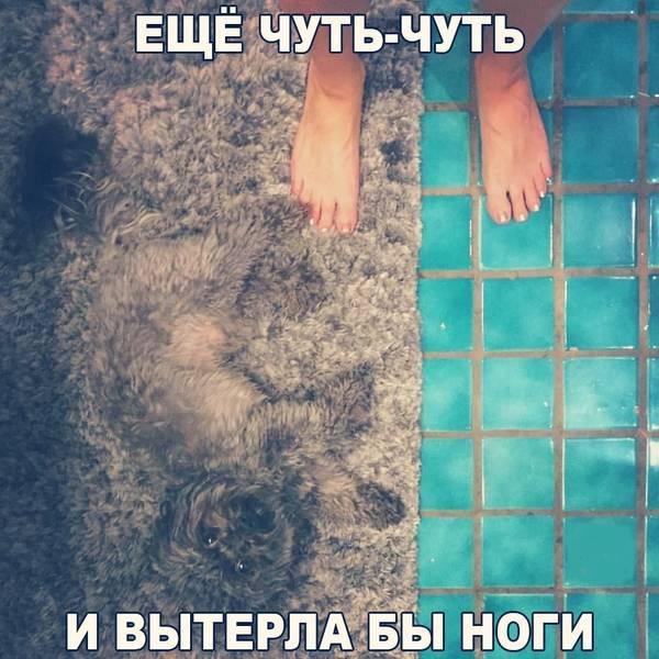 http://s8.uploads.ru/t/7MSvw.jpg