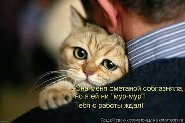 http://s8.uploads.ru/t/81Irm.jpg