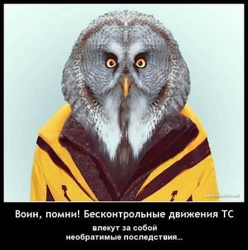 http://s8.uploads.ru/t/8KJH5.jpg