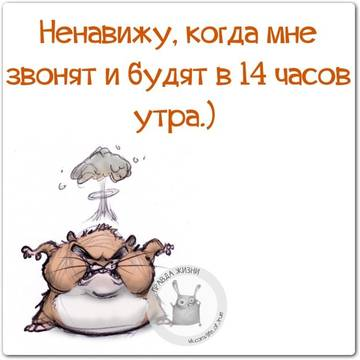 http://s8.uploads.ru/t/8ORwT.jpg