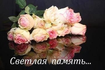 http://s8.uploads.ru/t/8Vica.jpg