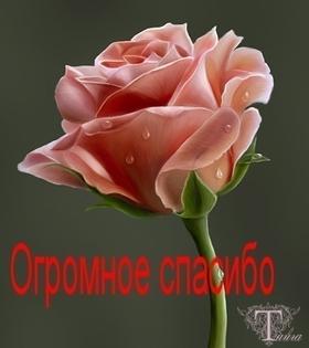 http://s8.uploads.ru/t/8bfD1.jpg