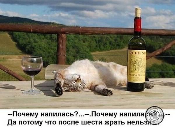 http://s8.uploads.ru/t/8f4Wj.jpg