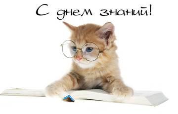 http://s8.uploads.ru/t/8iHM6.jpg
