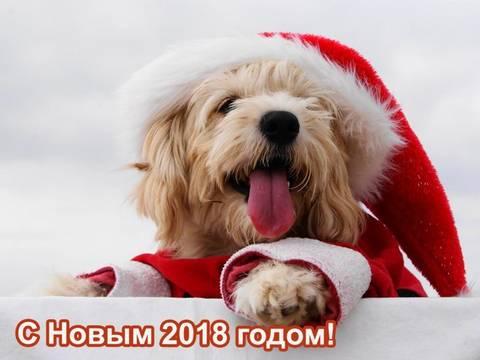 http://s8.uploads.ru/t/9RsOP.jpg