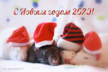 http://s8.uploads.ru/t/9aAp7.jpg