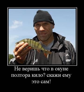 http://s8.uploads.ru/t/AOYtb.jpg