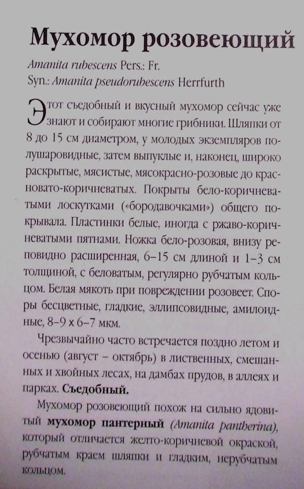 http://s8.uploads.ru/t/Au3TI.jpg