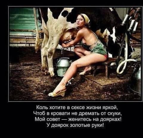 http://s8.uploads.ru/t/BpNYG.jpg