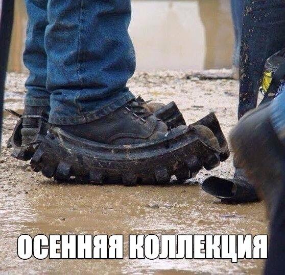 http://s8.uploads.ru/t/DEaX8.jpg