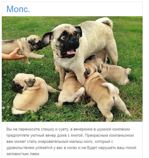 http://s8.uploads.ru/t/DFl3n.png