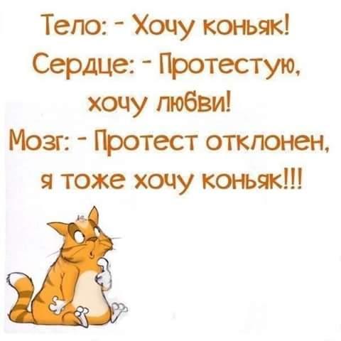 http://s8.uploads.ru/t/Dq6xE.jpg