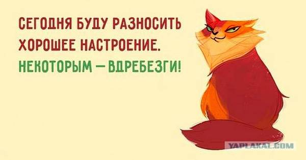 http://s8.uploads.ru/t/EShk7.jpg