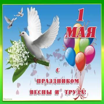http://s8.uploads.ru/t/EYULM.jpg