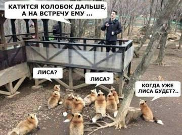 http://s8.uploads.ru/t/EogWw.jpg