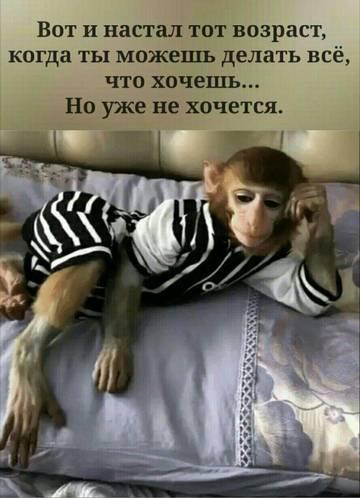 http://s8.uploads.ru/t/F3UYl.jpg