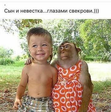 http://s8.uploads.ru/t/FTrAf.jpg