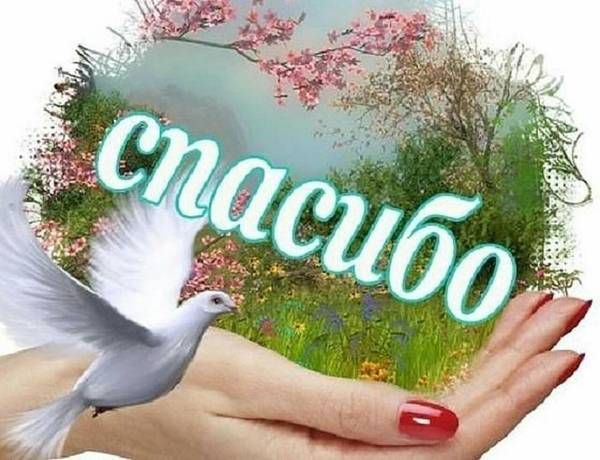 http://s8.uploads.ru/t/Ffgik.jpg