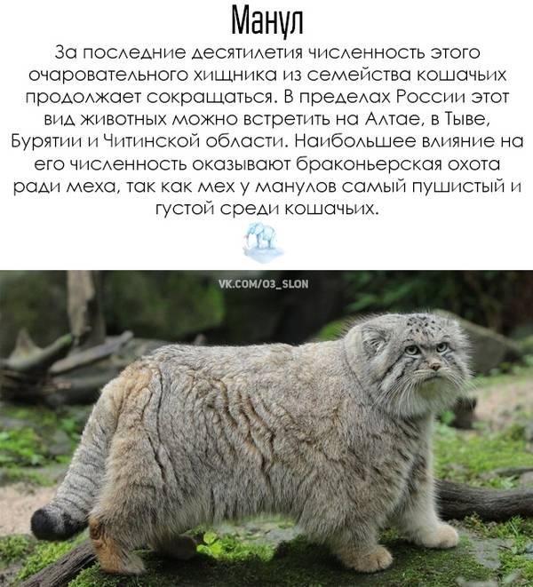 http://s8.uploads.ru/t/FloxC.jpg