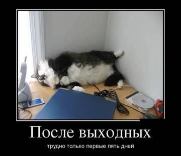 http://s8.uploads.ru/t/HaAUy.jpg
