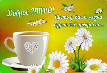 http://s8.uploads.ru/t/HdJSa.jpg