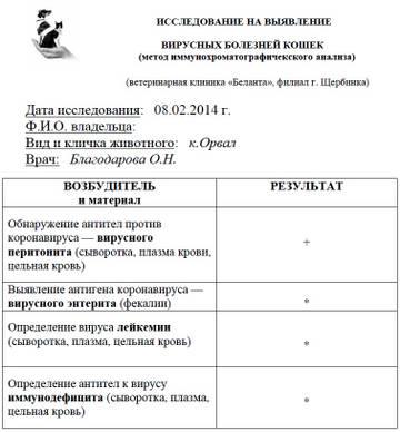 http://s8.uploads.ru/t/Hy7sC.jpg