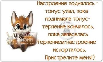 http://s8.uploads.ru/t/IETud.jpg