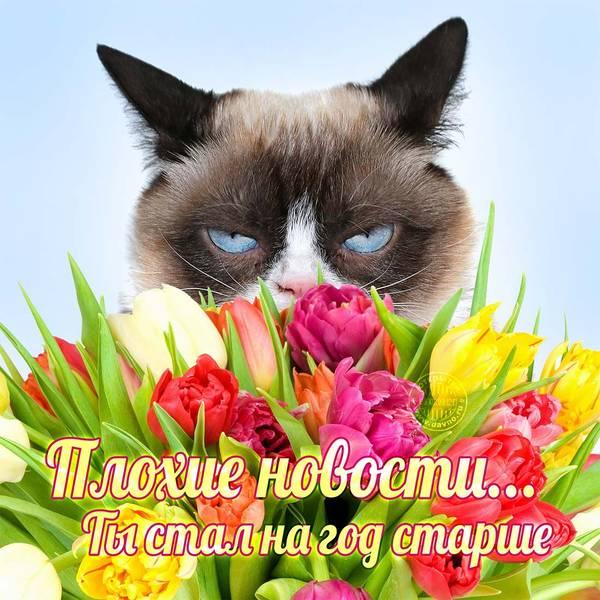 http://s8.uploads.ru/t/IHBu4.jpg