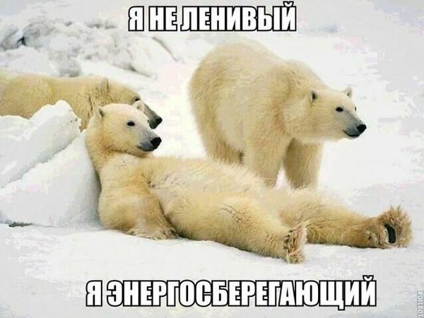 http://s8.uploads.ru/t/IqfDe.jpg